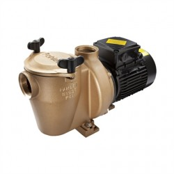 Pahlén Pump Brons 1,1 kW 1-fas