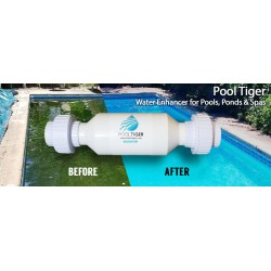 Pool Tiger