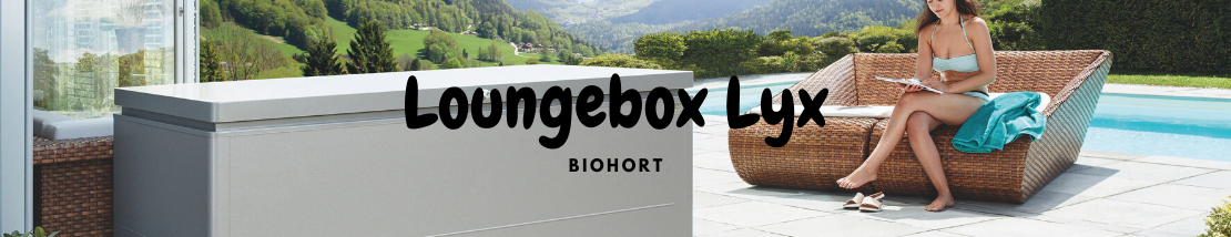 Loungebox Lyx